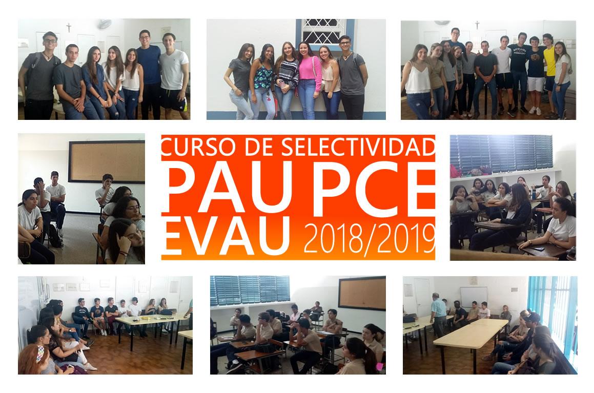 Curso de Selectividad 2018-2019